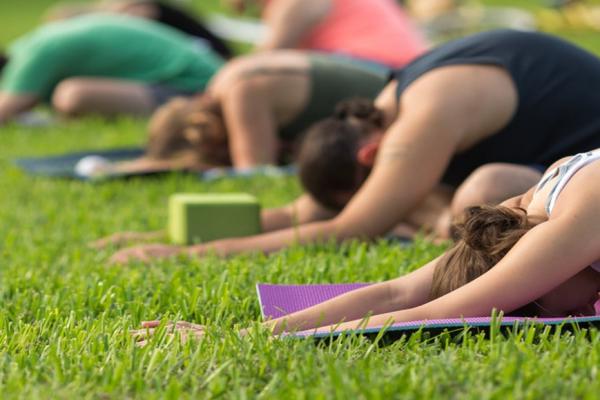 Hatha/Vinyasa  Yoga flow
